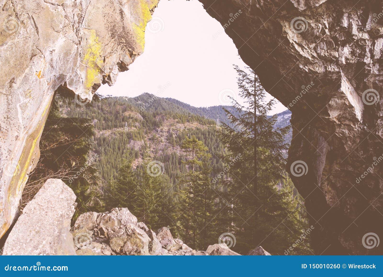 Tiro bonito de montanhas rochosas altas e de uma floresta