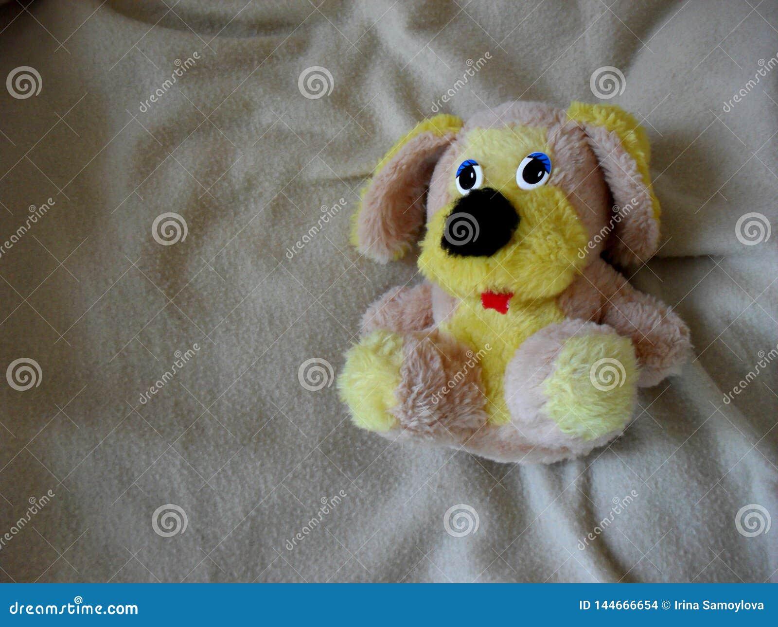 Tiro bonito do brinquedo do cachorrinho