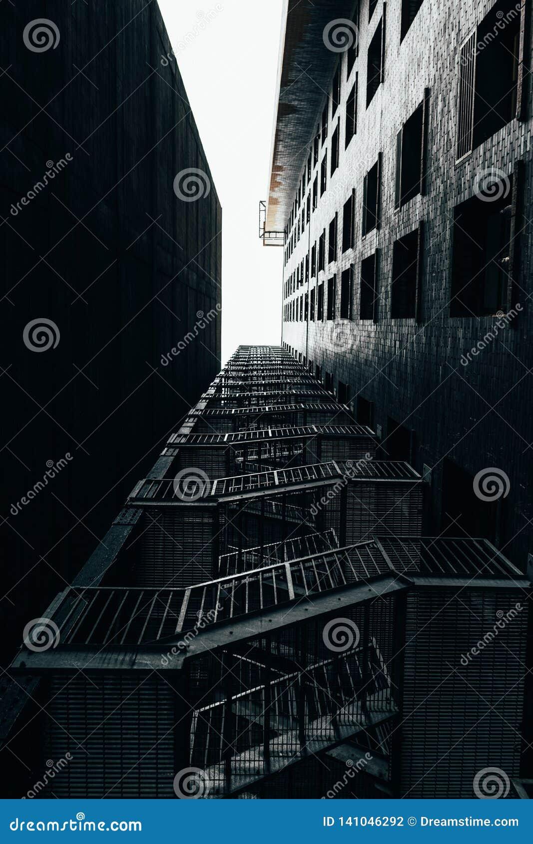 Tiro de las operaciones de búsqueda de la escalera