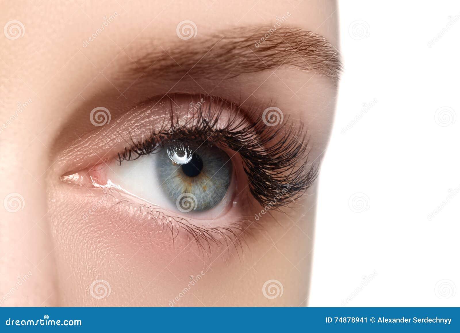 Tiro macro do olho bonito do ` s da mulher com eyelashe extremamente longo