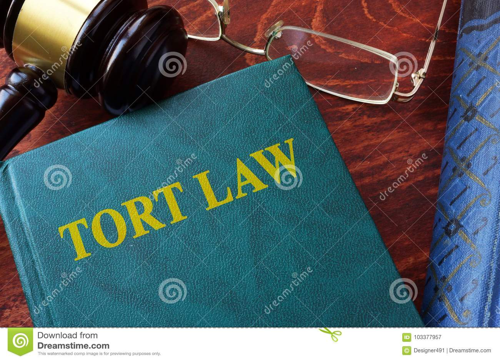 Titel der unerlaubten Handlung Gesetzesauf einem Buch und einem Hammer