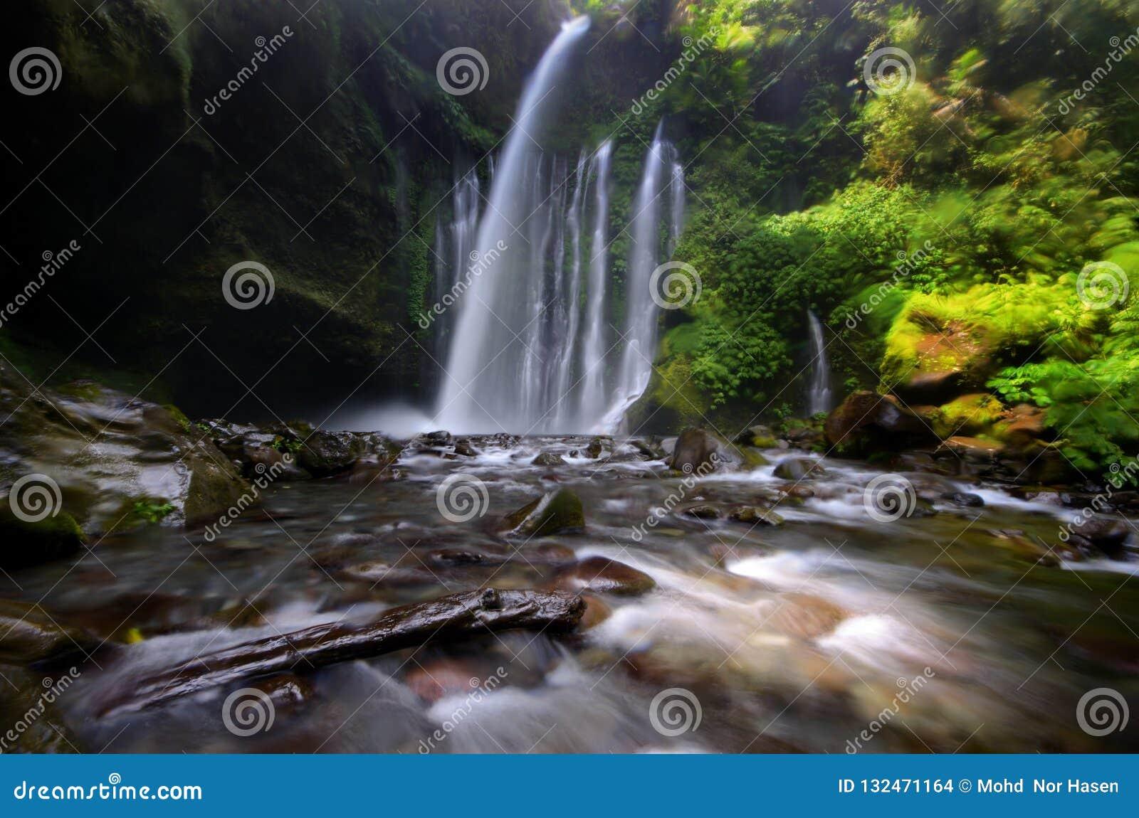 Tiu Kelep Waterfall near Rinjani, Senaru Lombok indonesia. Southeast Asia. Motion blur and soft focus due to Long Exposure Shot.