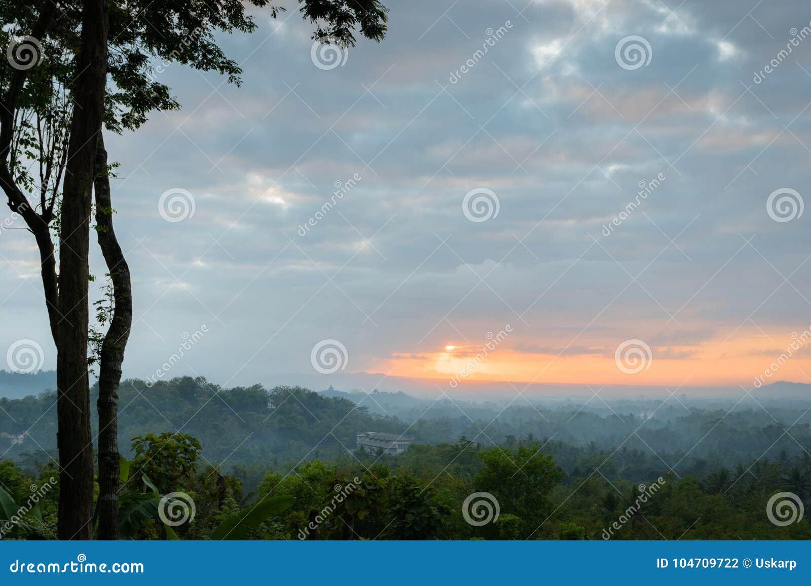 TLandscape della foresta e dell alba che esaminano il tempio di Borobudur