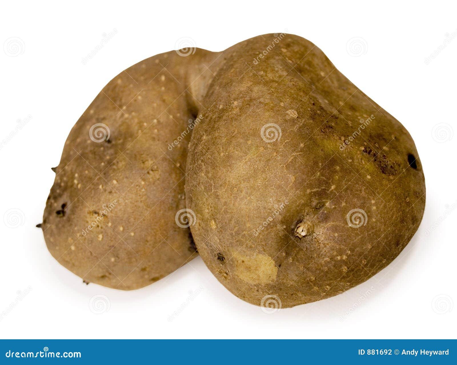 To jego przyjaciele tyłka ziemniak spud