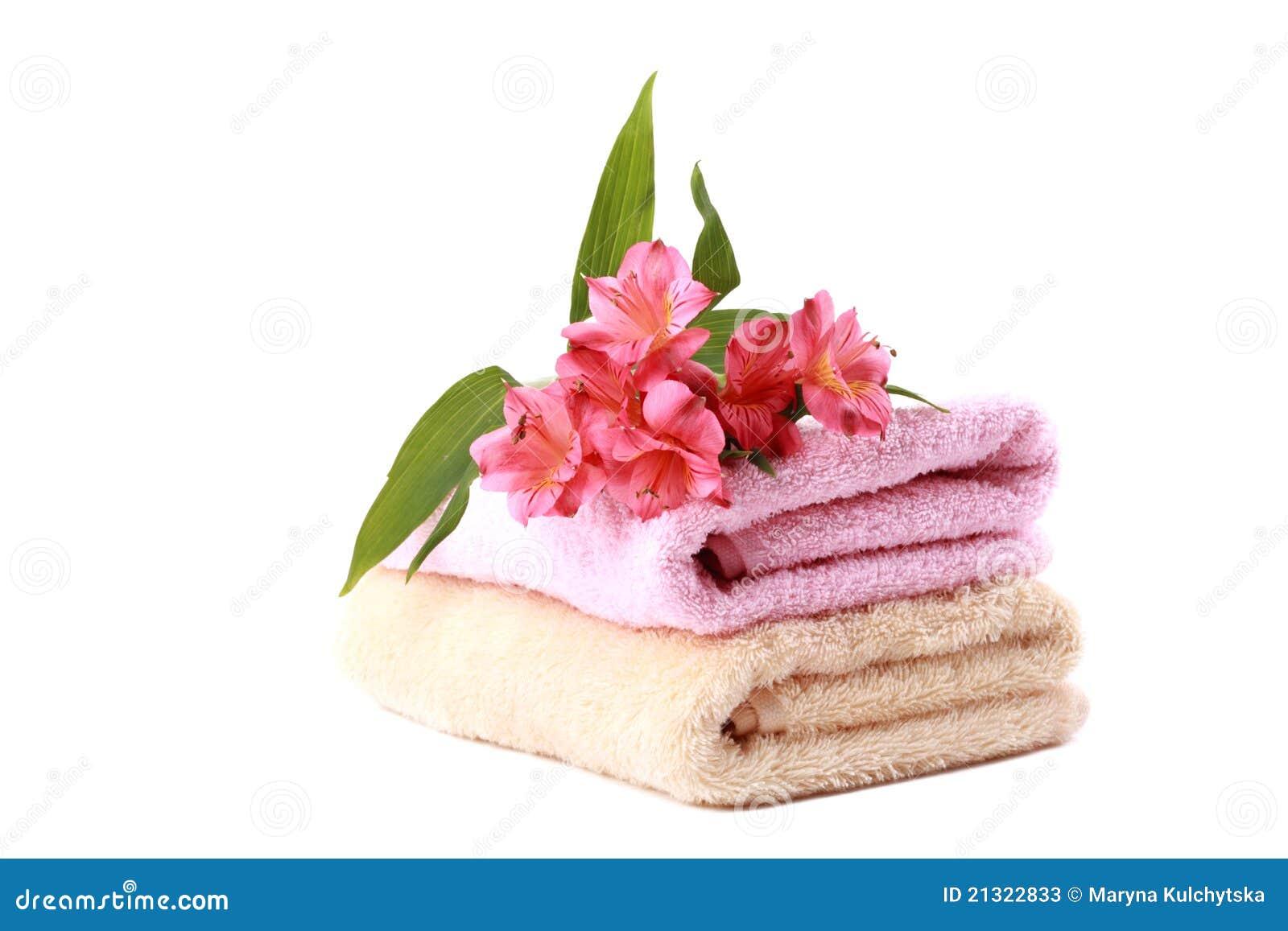 Bragas Rosa online Selección de ropa íntima de mujer