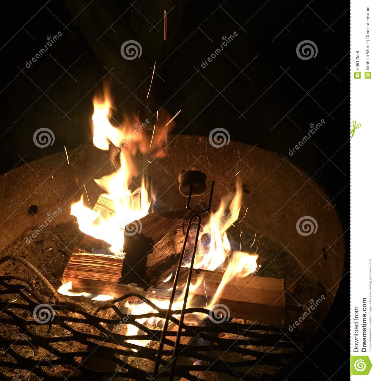 Download Toasting Marshmallows Over A Campfire Stock Photo