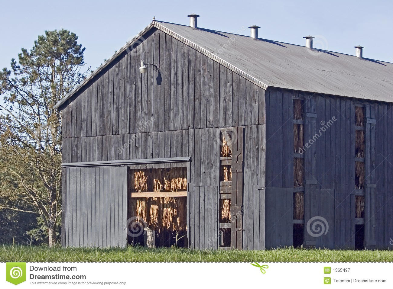 Tobacco barn royalty free stock photography image 1365497 for Tobacco barn house plans