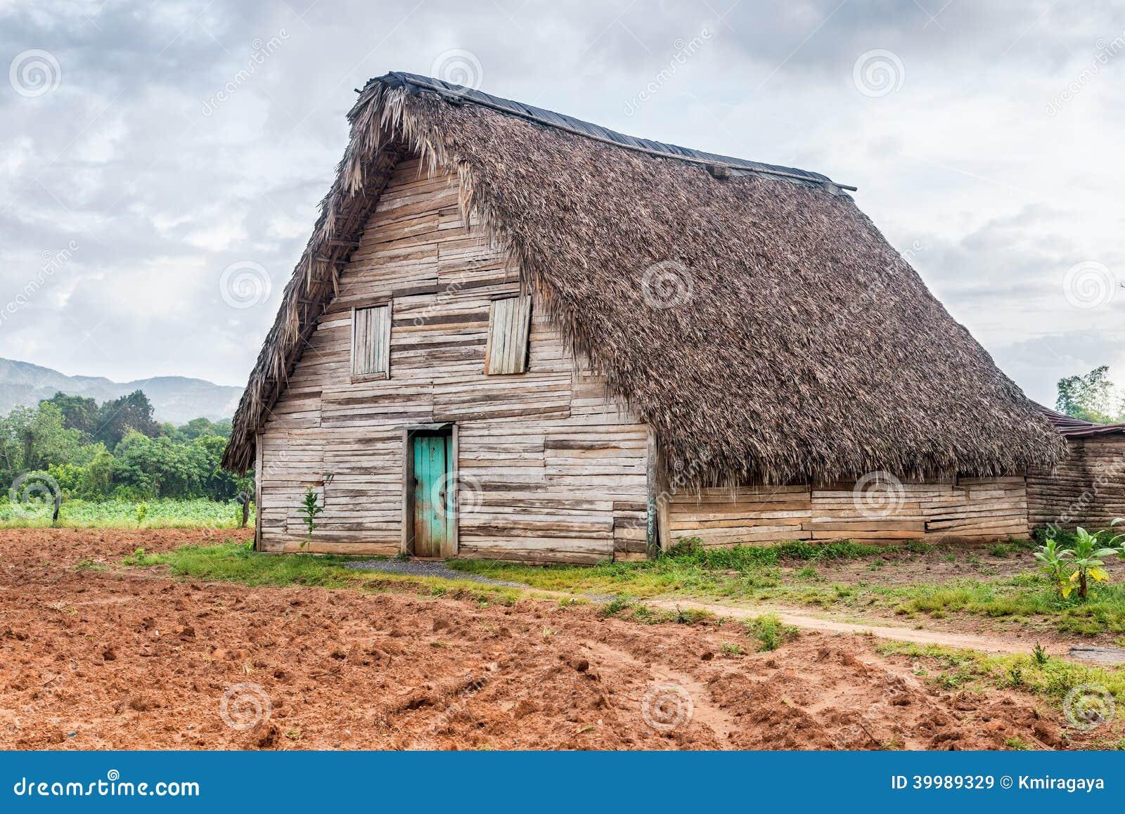 Tobacco curing barn in pinar del rio cuba stock photo for Tobacco barn house plans