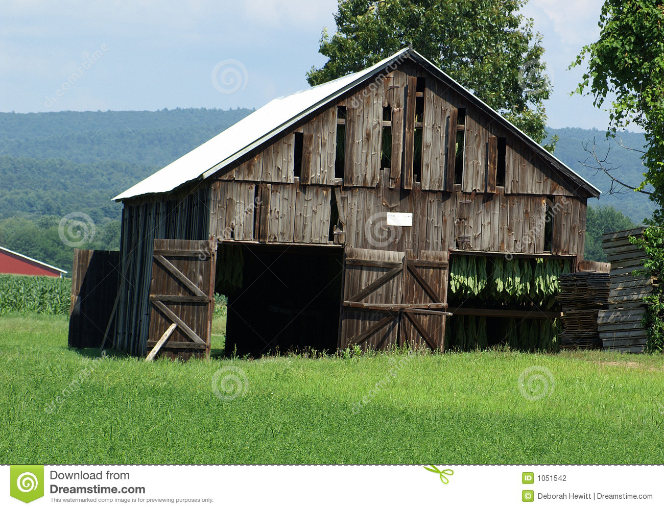 Tobacco drying barn stock photography image 1051542 for Tobacco barn house plans