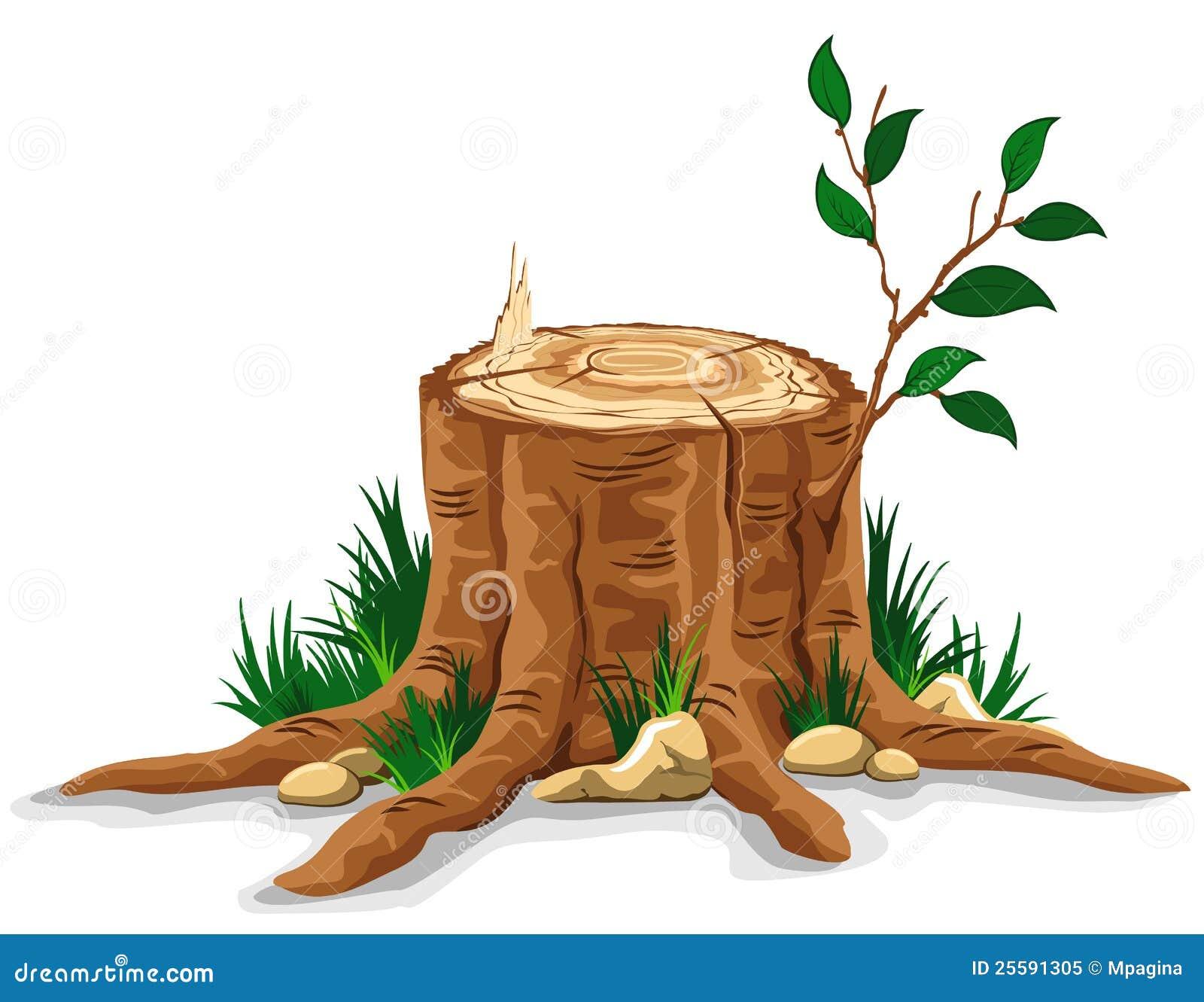 Tocón de árbol
