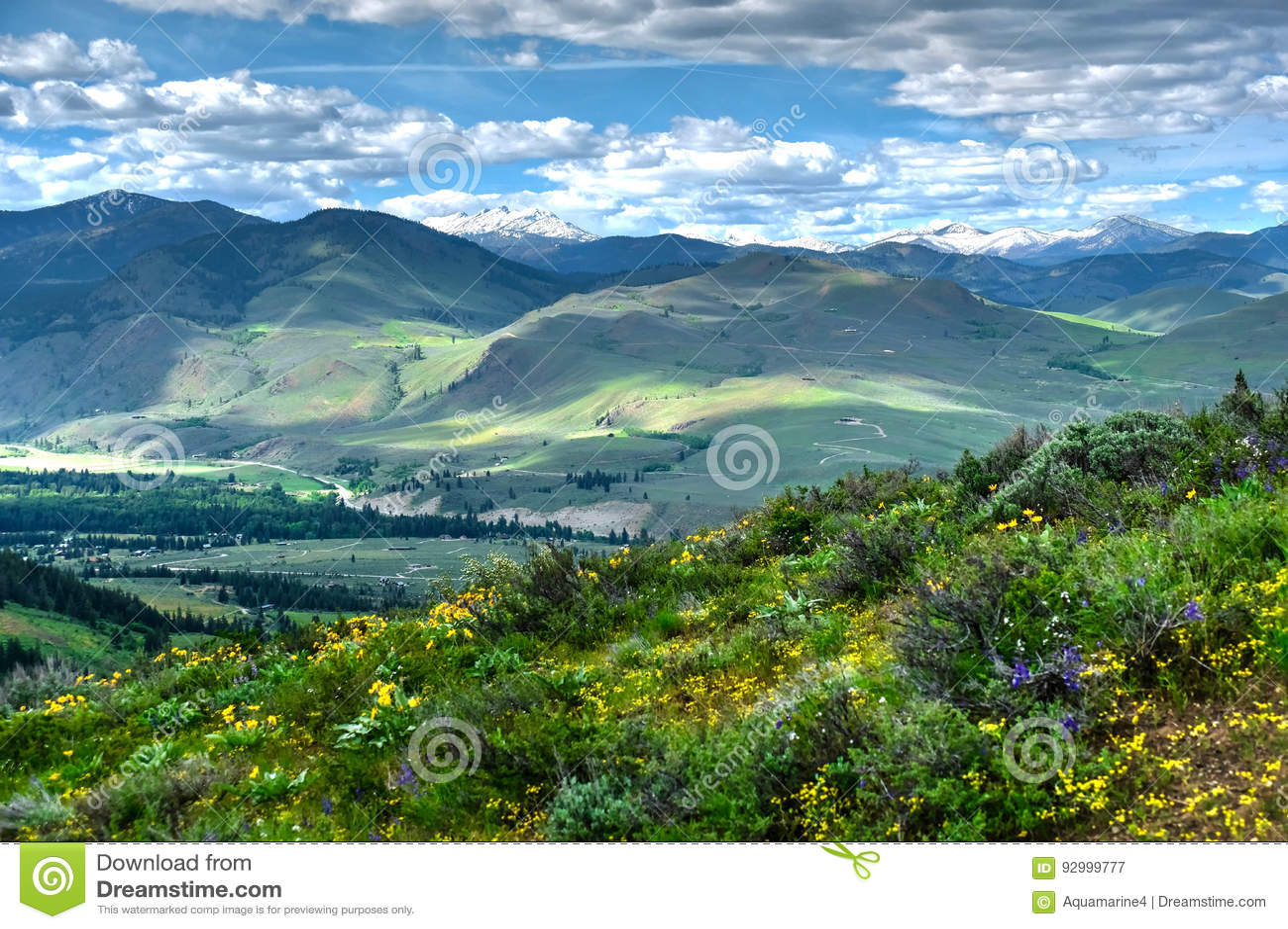 Toczni wzgórza od Patterson góry