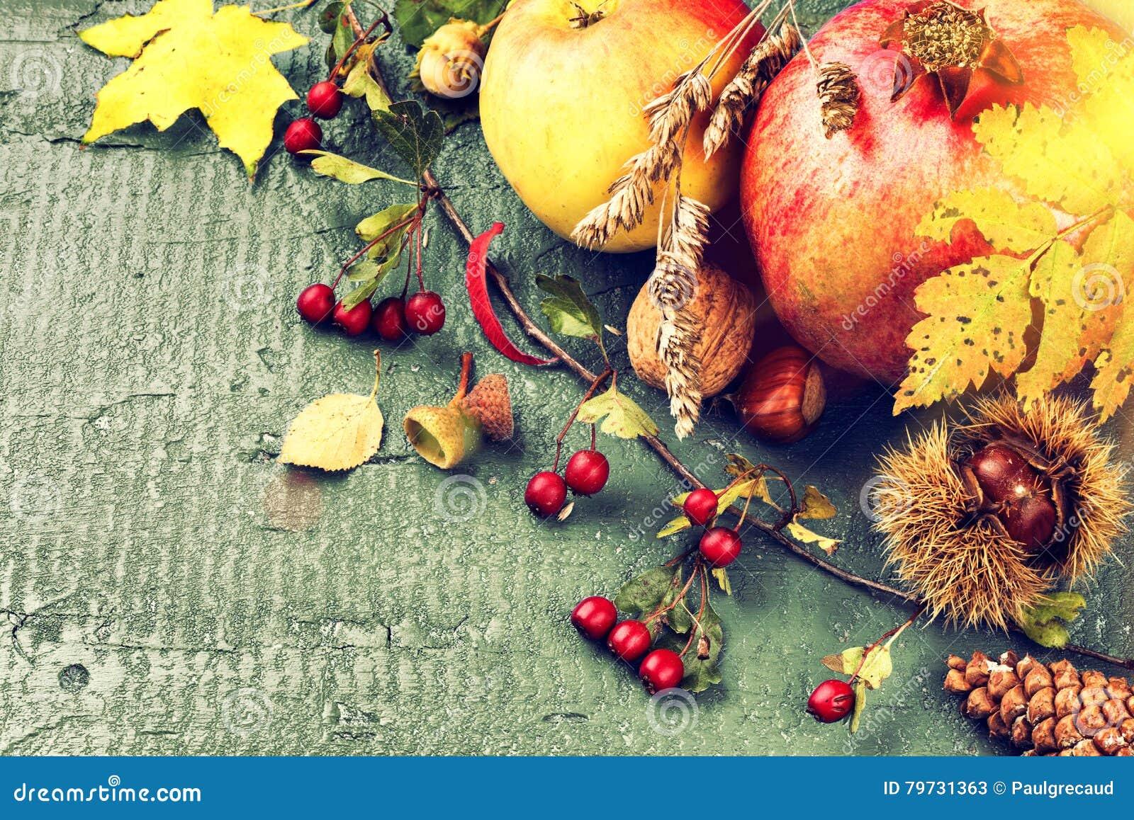 Todavía del otoño vida con la granada, la manzana y las hojas de la caída Caída