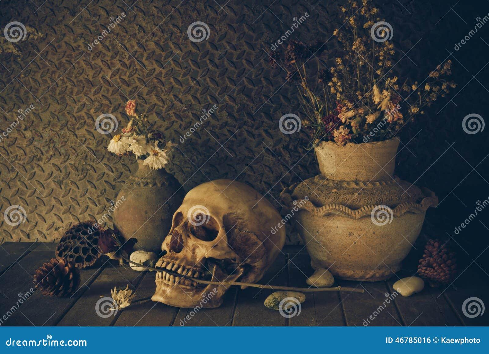 Todavía vida con un cráneo