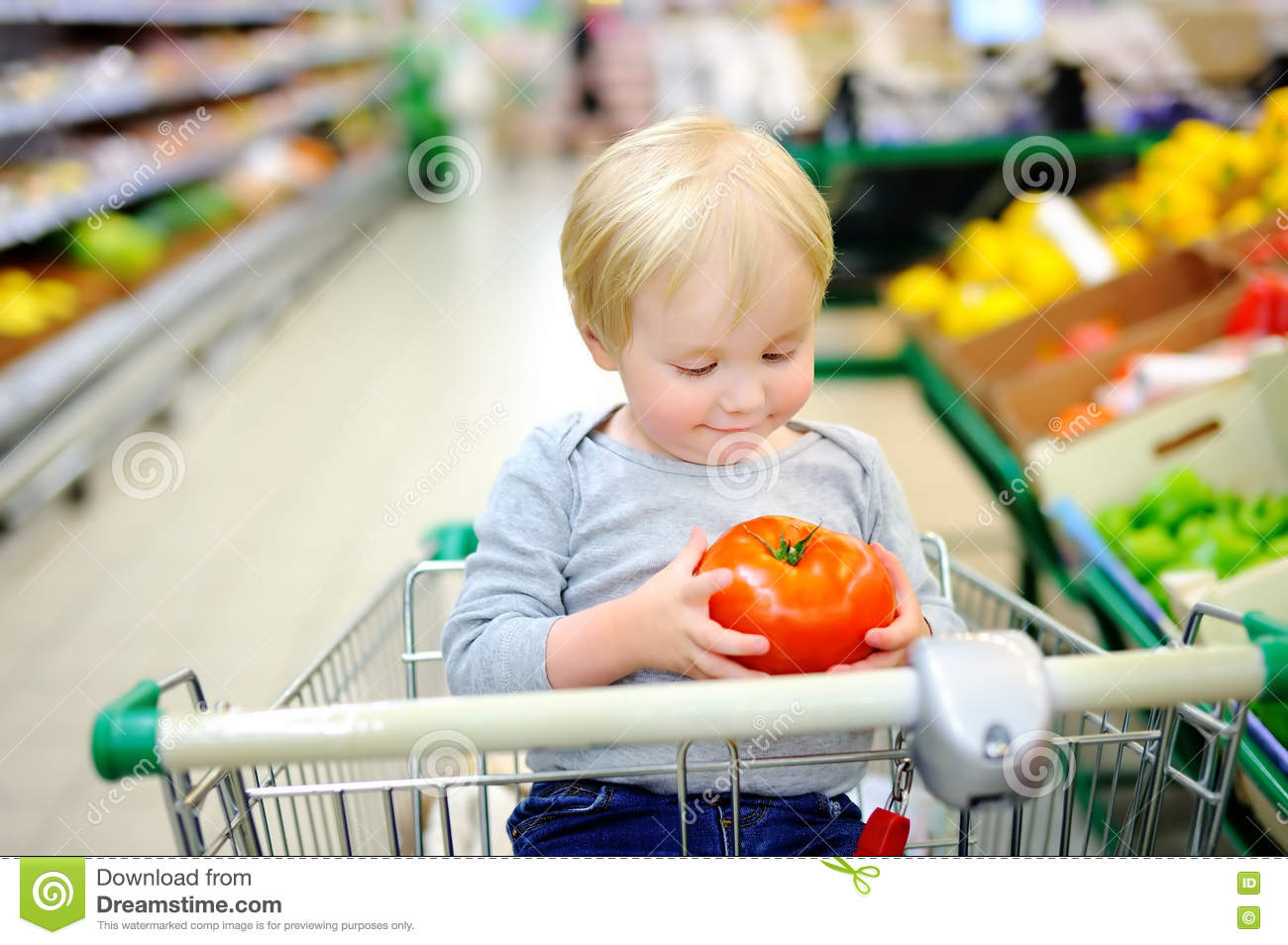 592d08d27 Toddler Boy Sitting In The Shopping Cart In A Food Store Stock Image ...