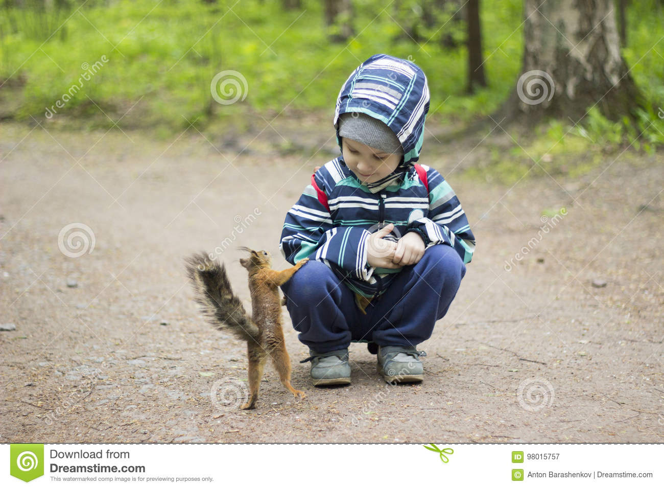 Toddler play squirrel in park. Kids meet nature.
