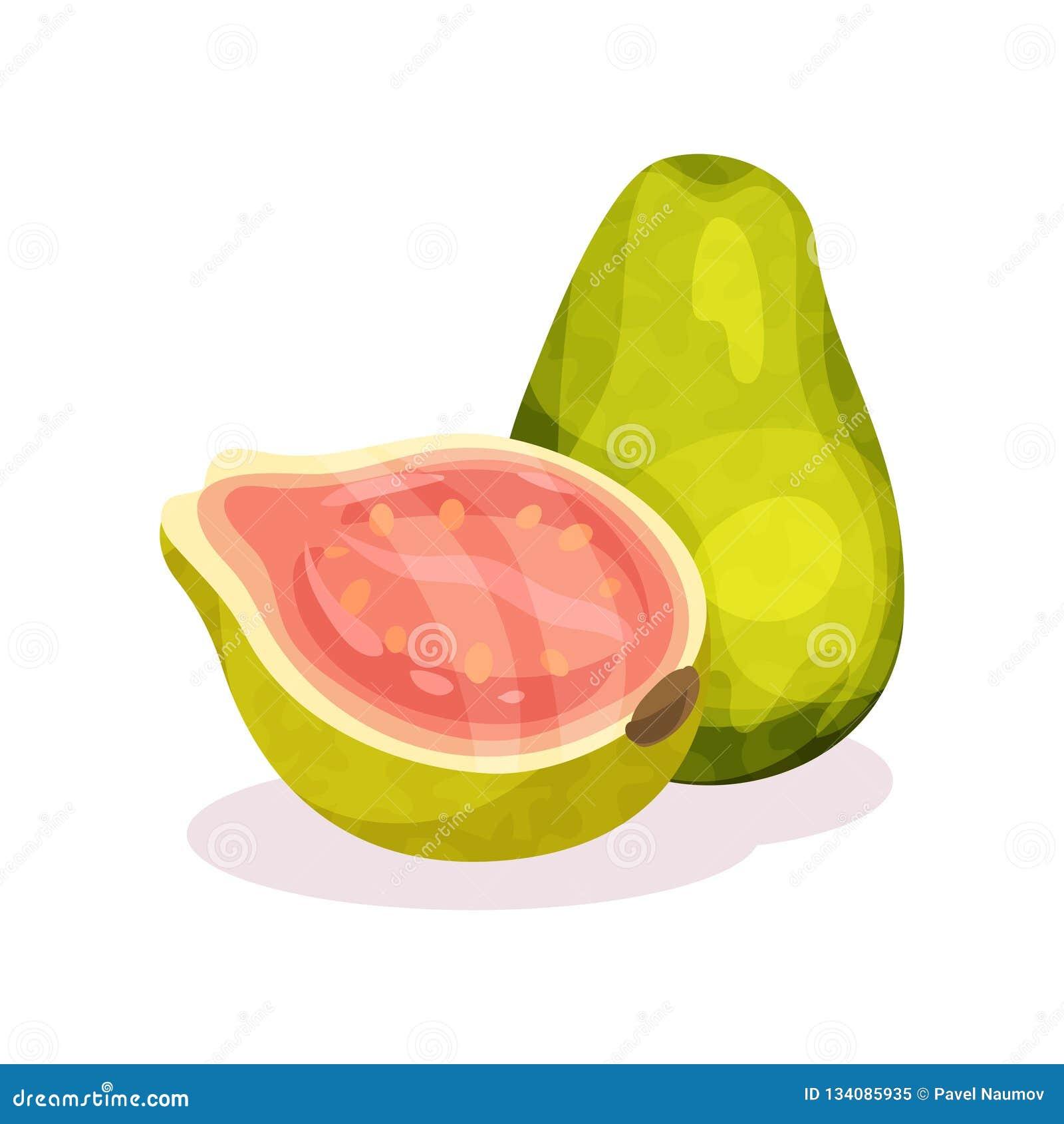 Todo e metade da goiaba fresca Fruta exótica Produto orgânico Nutrição saudável Projeto liso detalhado do vetor