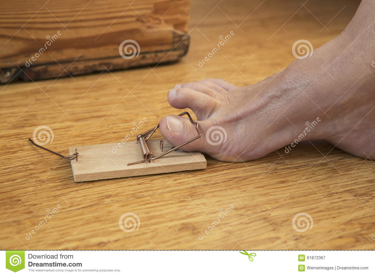 Toe caught in mousetrap stock photo image 61872367 for Hardwood floors hurt feet