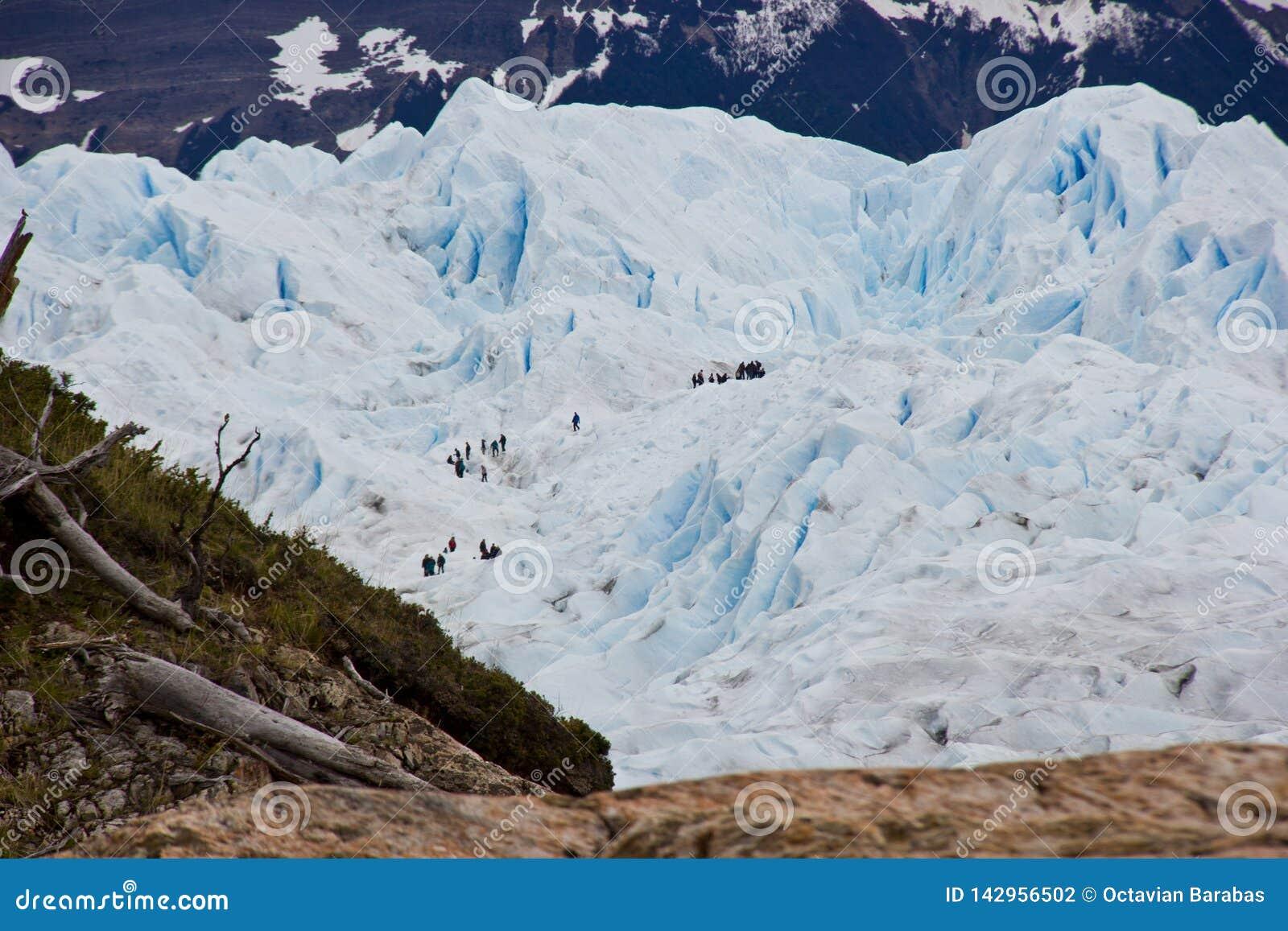 Toeristen die gletsjer in Chili/Zuid-Amerika beklimmen