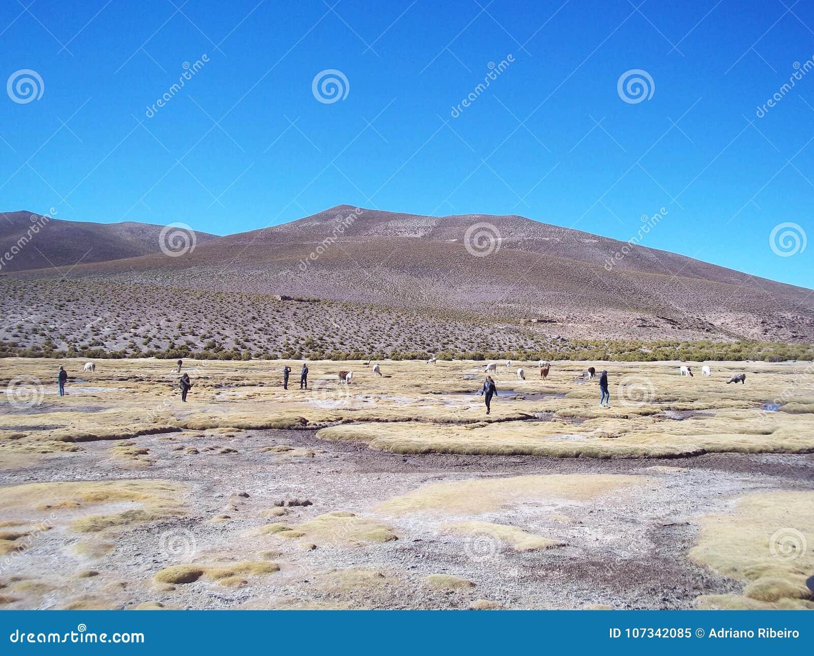 Toeristen die mooie woestijnlandschappen van Boliviaanse altiplano overwegen