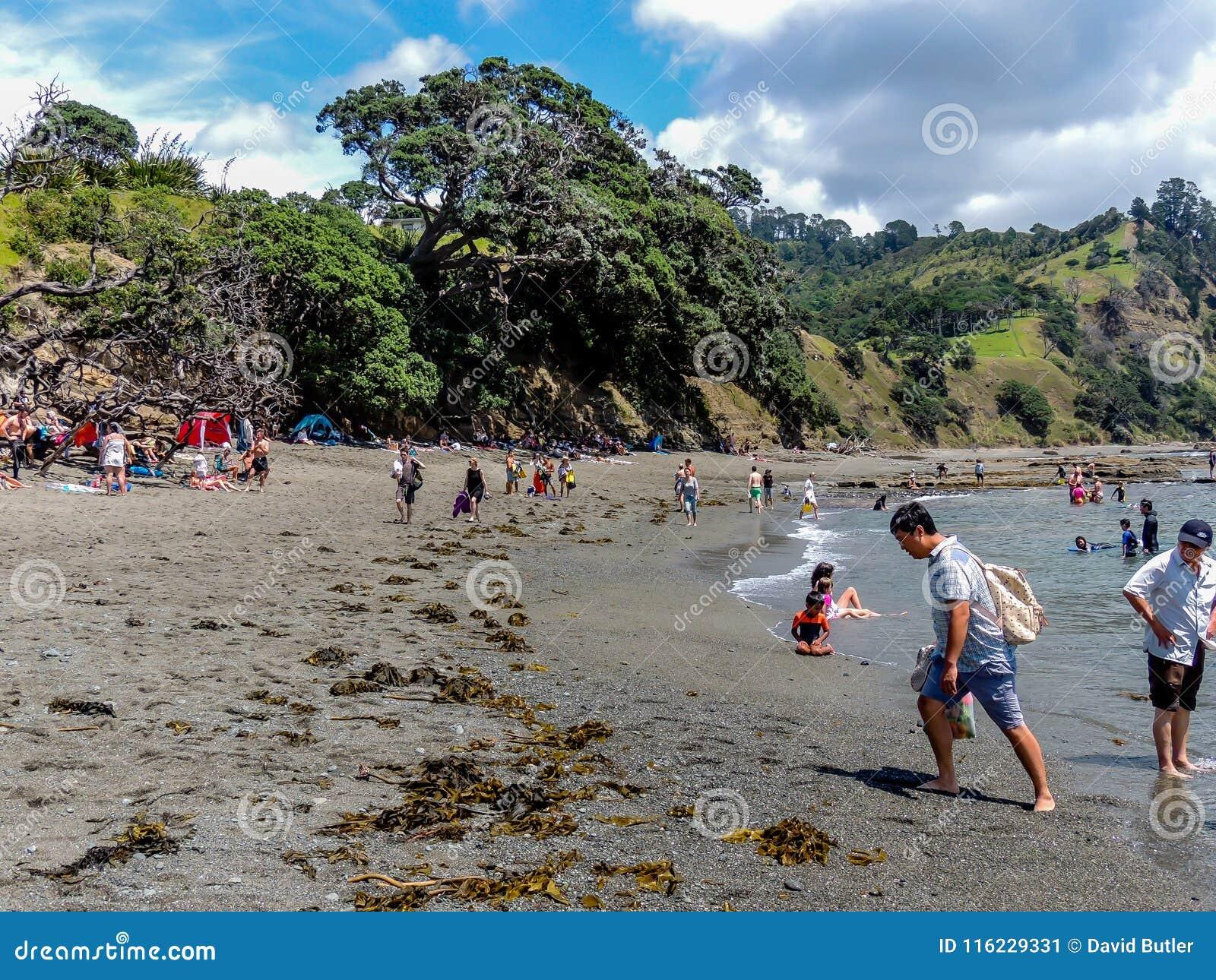 Toeristen die touristy materiaal terwijl uit en ongeveer in Nieuw Zeeland doen