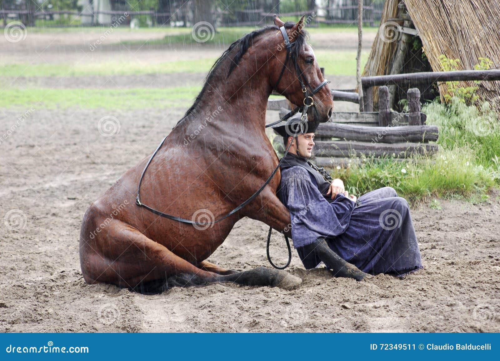 Togheter de reclinación del jinete y del caballo