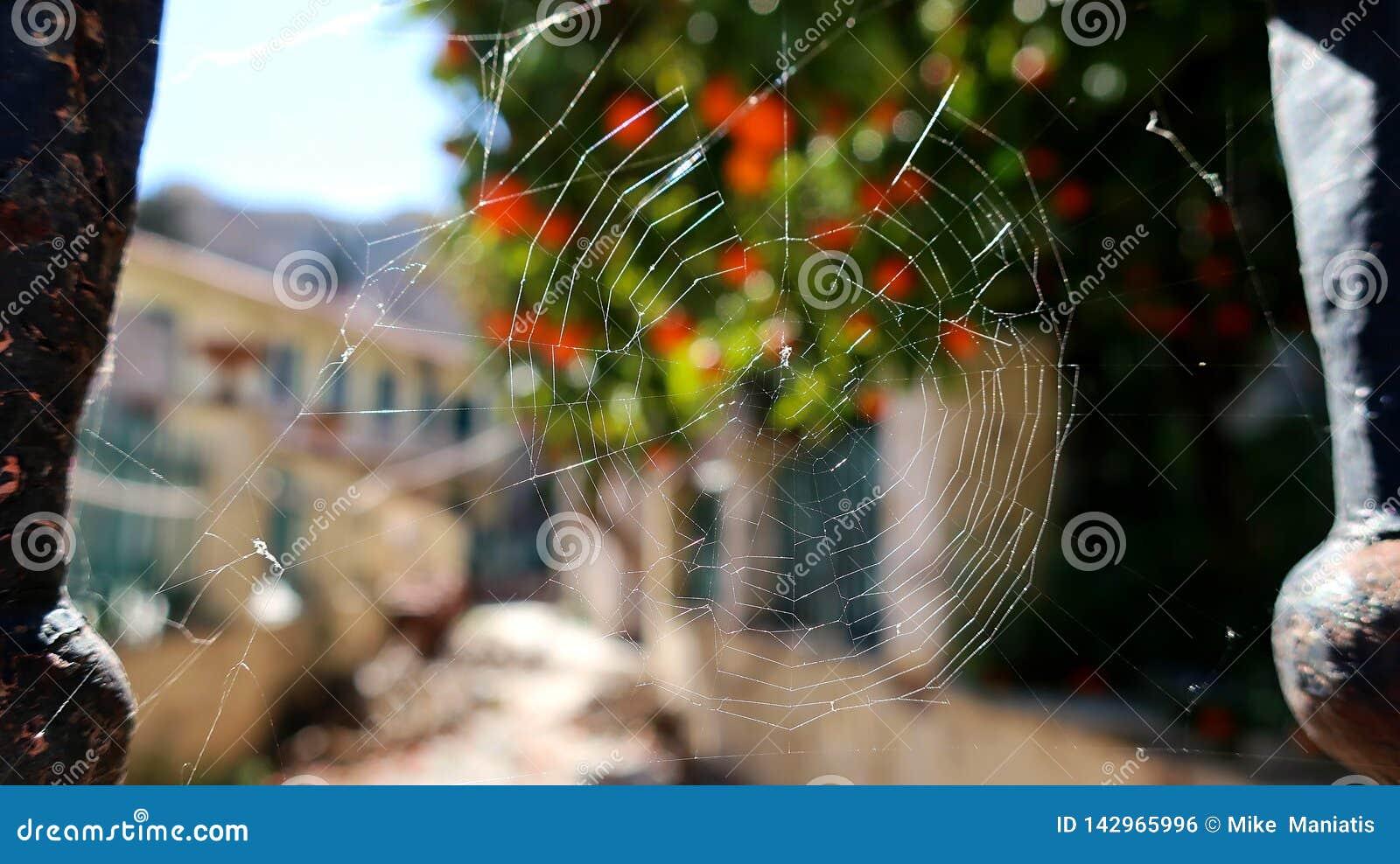 Toile d araignées sur des portes Rusty Banister