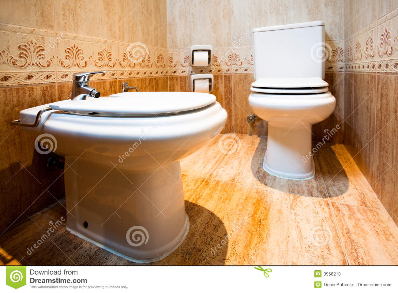 toilet and bidet in the modern bathroom of hotel stock photo image 9956210. Black Bedroom Furniture Sets. Home Design Ideas