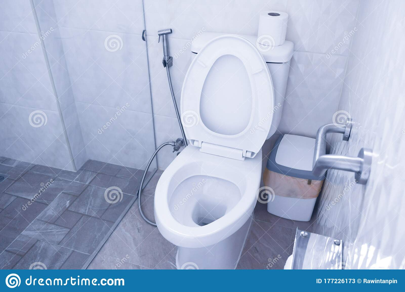 Toilet Bowl In Modern Bathroom With Bins And Toilet Paper Flush Toilet Clean Bathroom Stock Image Image Of Tiles Grandsire 177226173