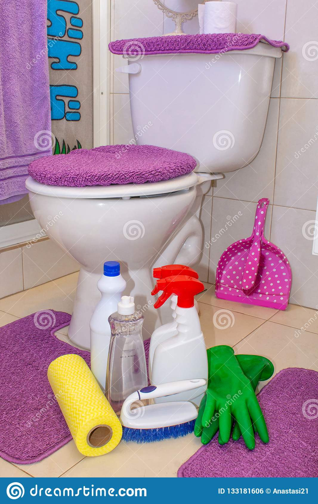 Toilet Cleaning Tidying, Detergents, Chemicals, Sponges