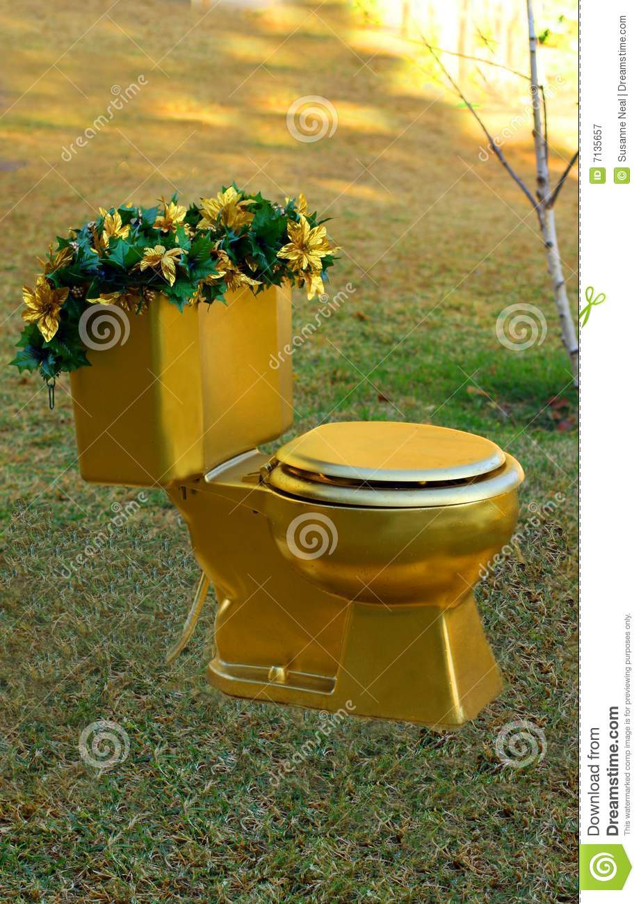 toilet gold throne stock image image of potty funny 7135657. Black Bedroom Furniture Sets. Home Design Ideas