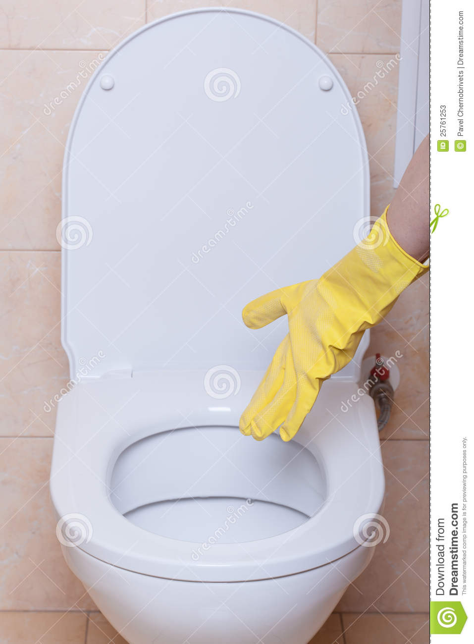 Toilet Hygiene Concept Stock Image Image Of Home