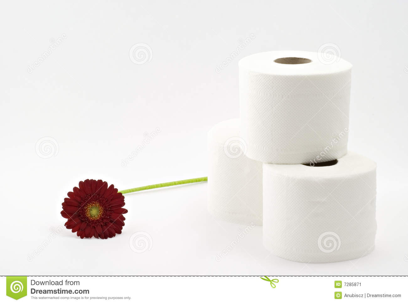 Toilet paper with flower stock image image of dainty 7285871 download toilet paper with flower stock image image of dainty 7285871 mightylinksfo