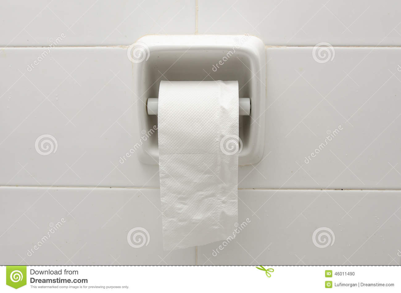 Toilet Paper Holder Stock Photo Image Of Mounted Water 46011490