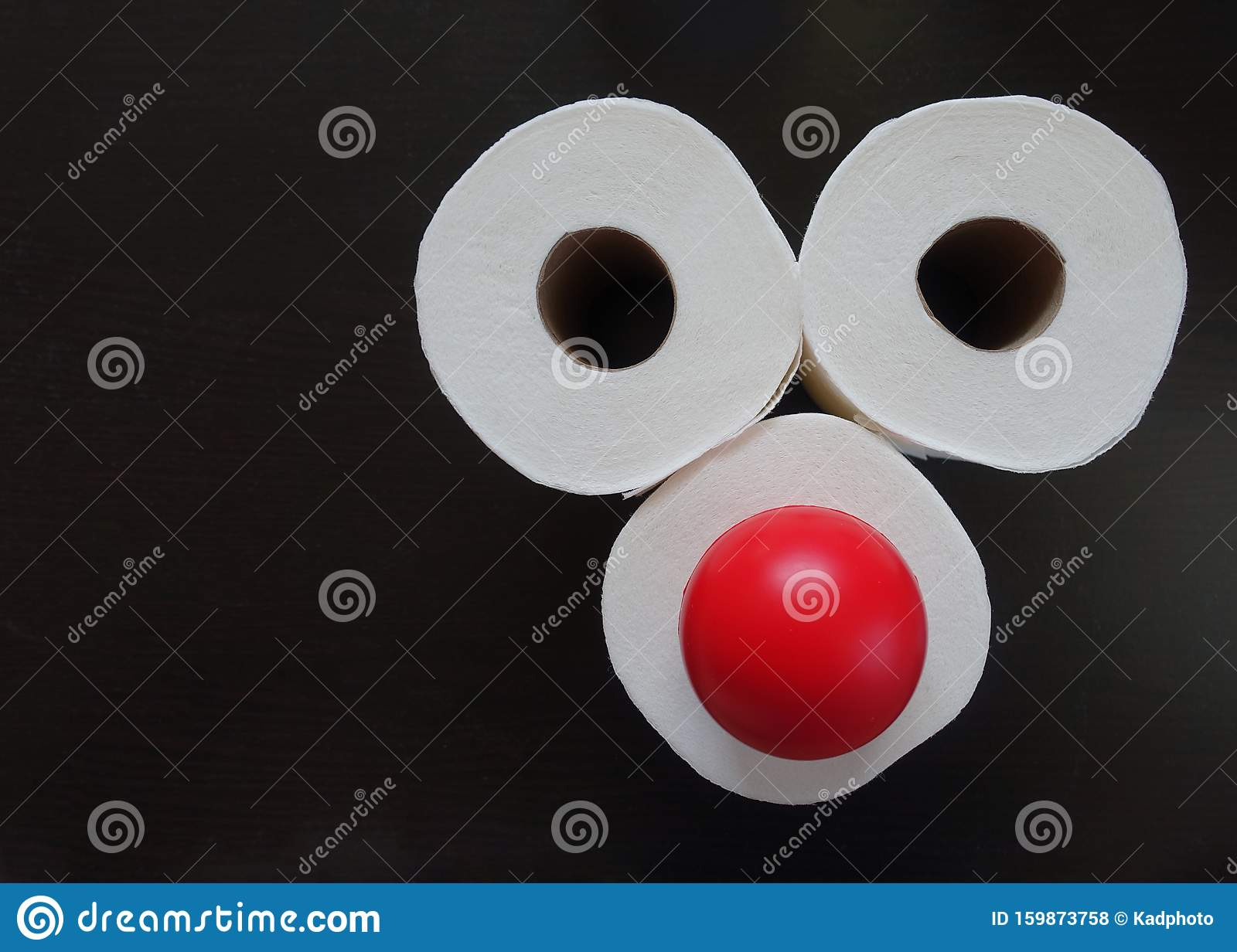 Toilet Paper Rolls Funny Face