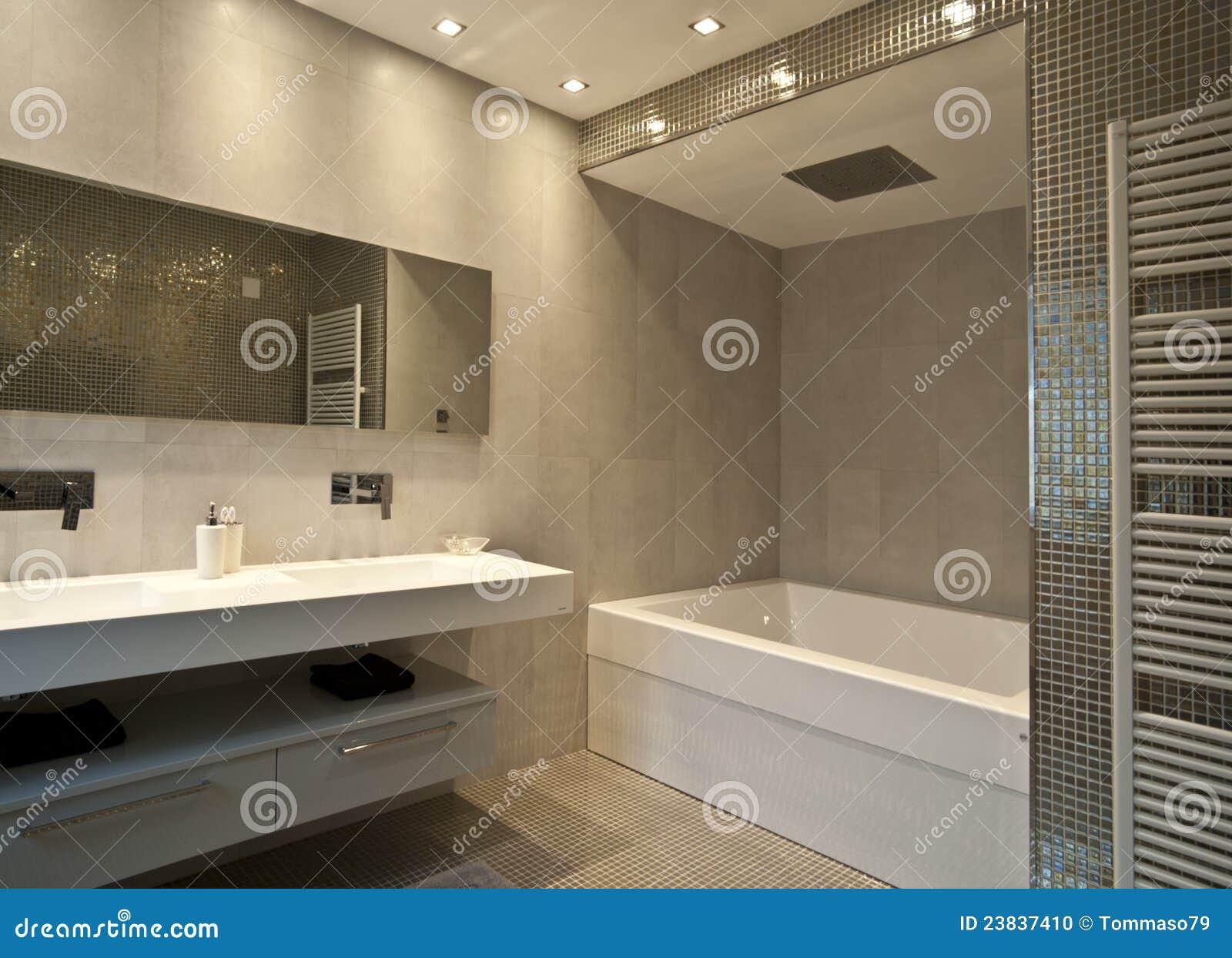 Toilette de lujo foto de archivo imagen 23837410 - Foto de toilette ...