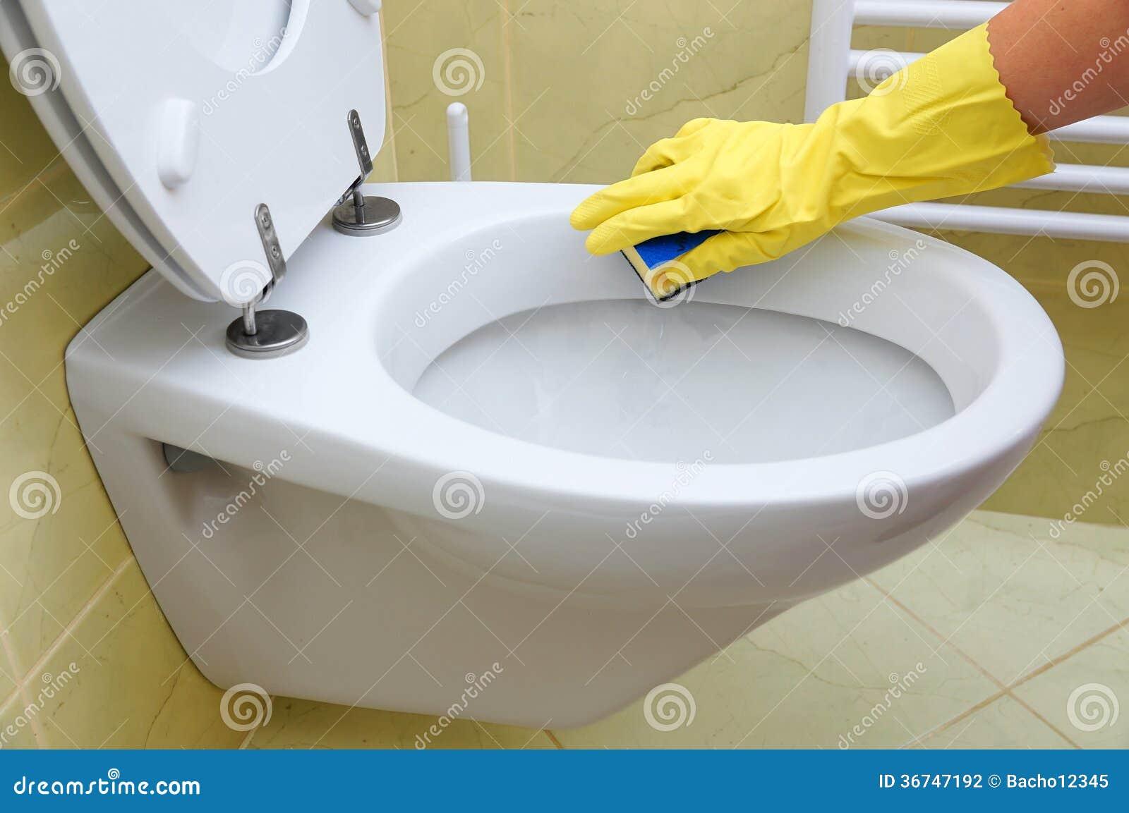 toilette de nettoyage photographie stock image 36747192. Black Bedroom Furniture Sets. Home Design Ideas