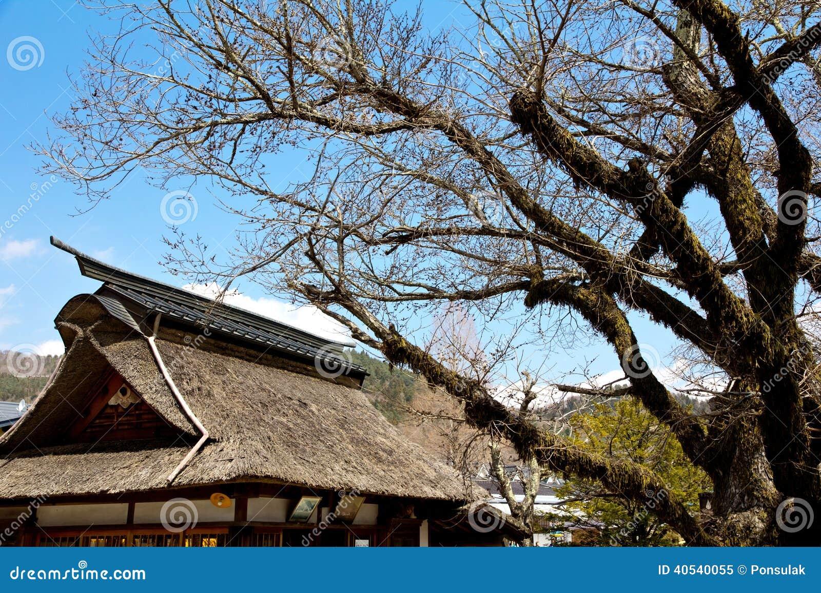 Dans le village japon