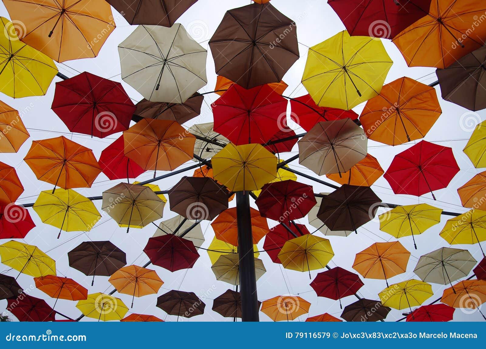 Toit de parapluie