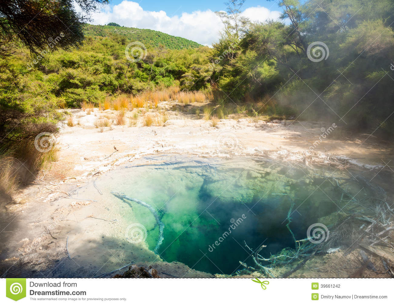 Tokaanu Thermal Pools In New Zealand Stock Photo Image