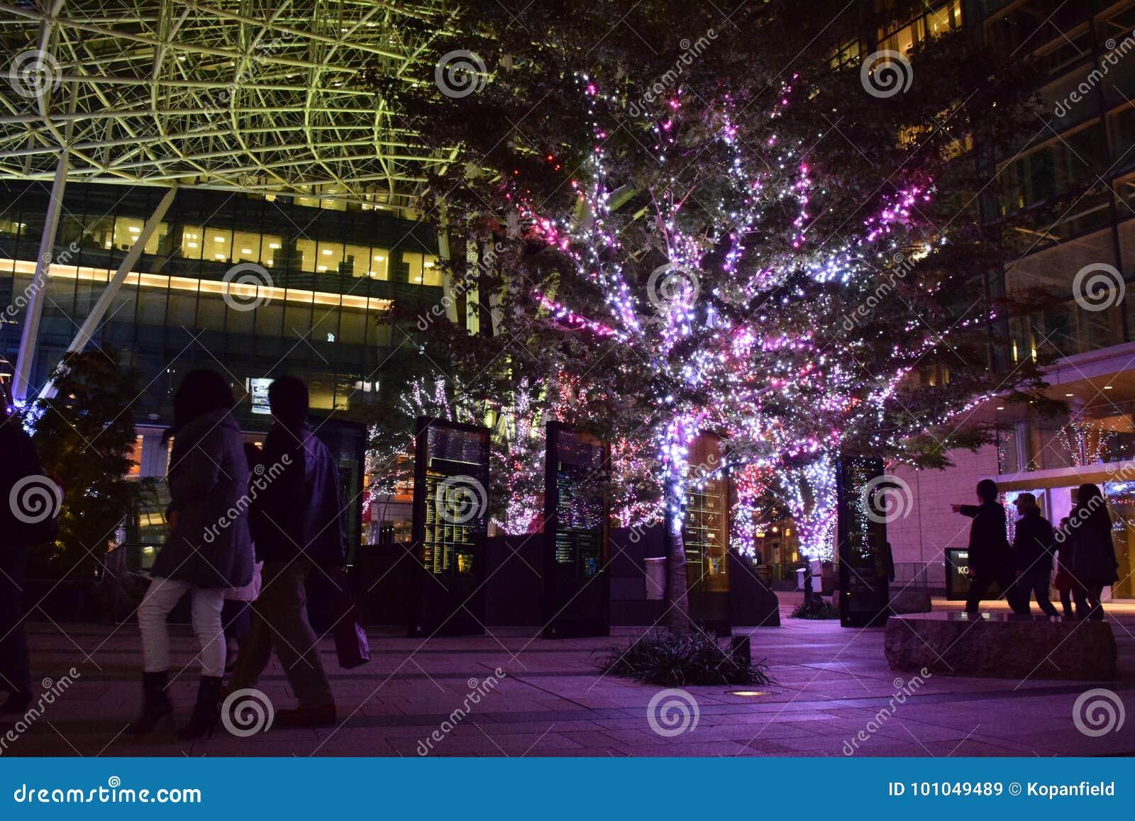 TOKIO, JAPÓN 2014: iluminaciones hermosas de los decoros llevados de las luces