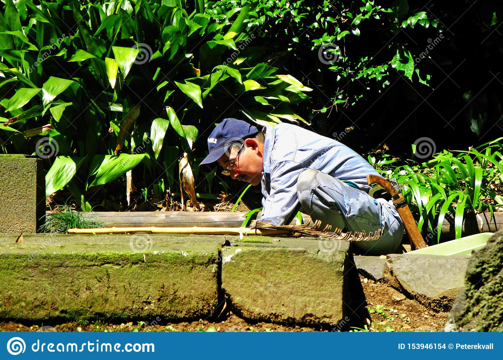 Japanese gardener clears weeds on the ground