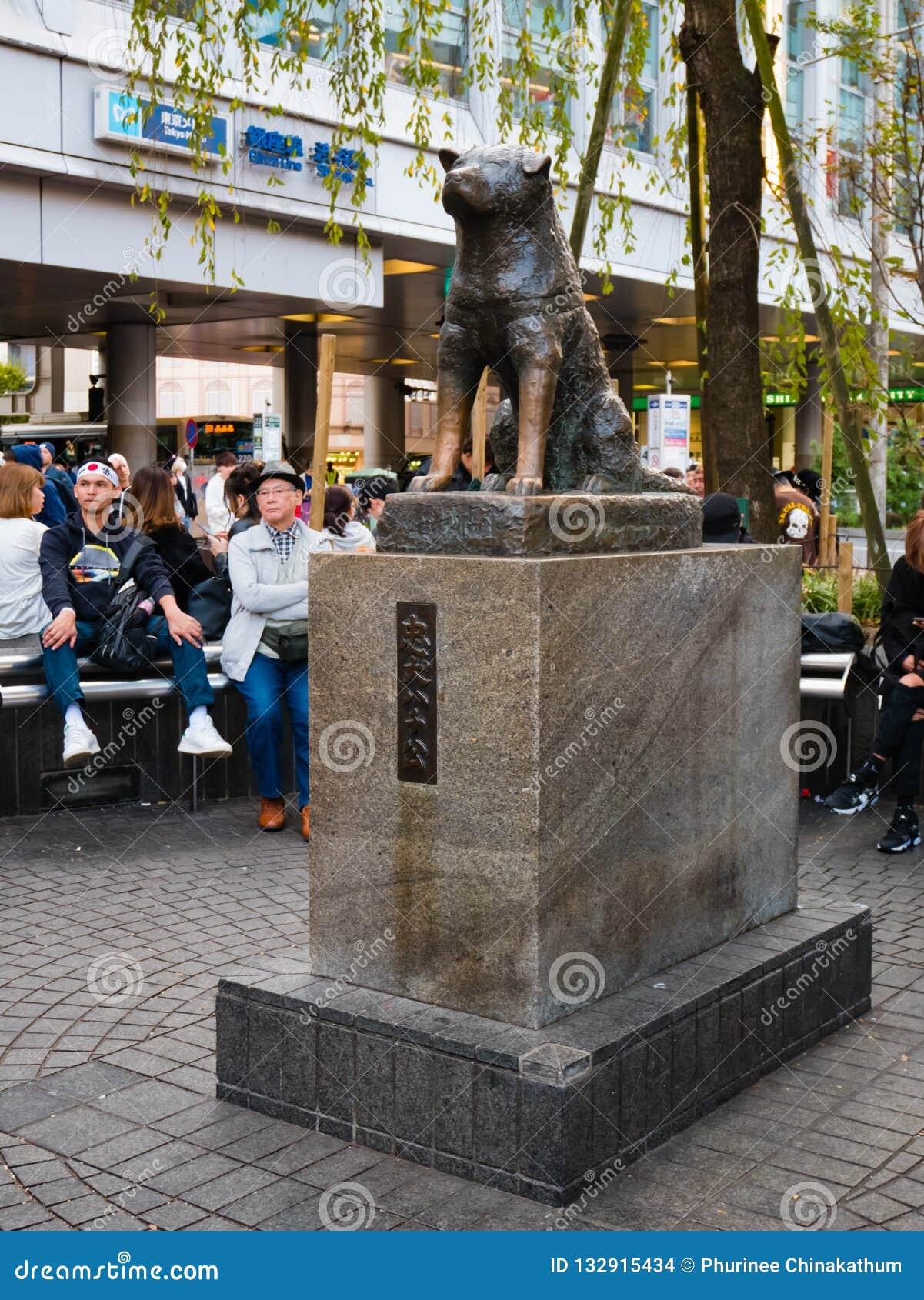 Hachiko Memorial statue editorial stock image. Image of ...
