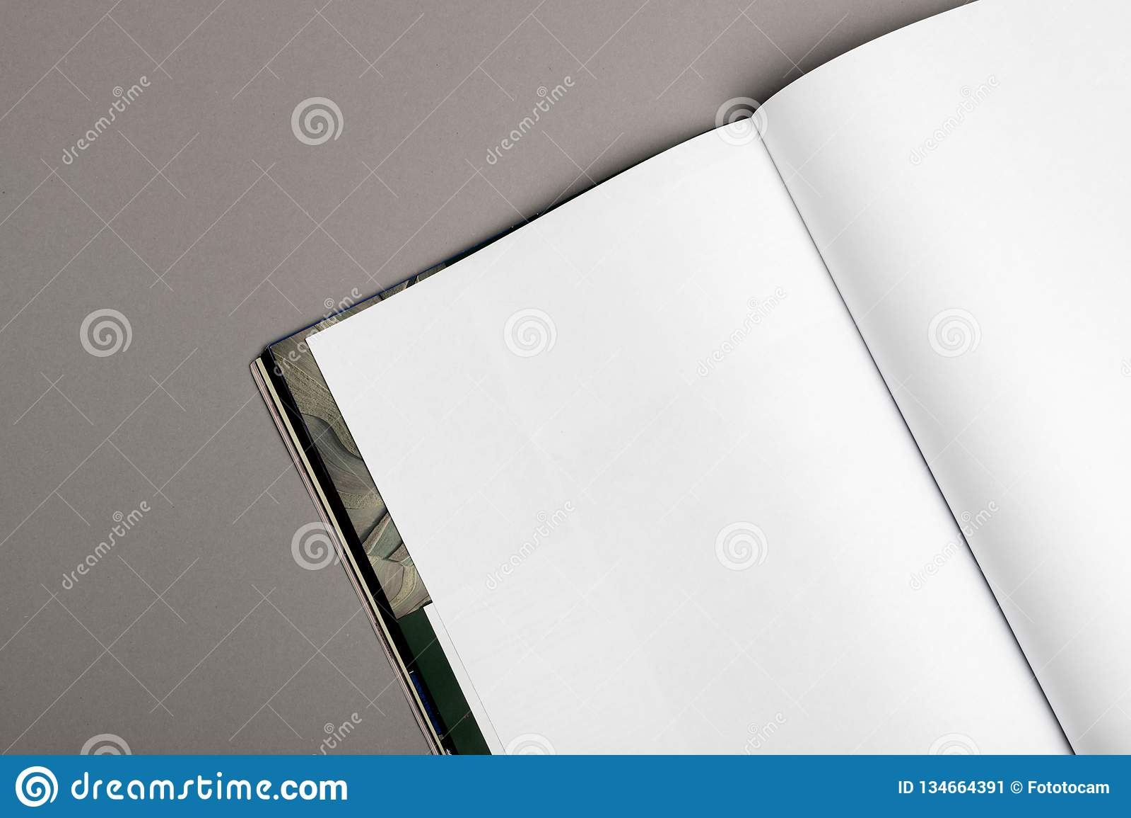 Tom broschyrtidskrift som isoleras på grå färger för att byta ut din design