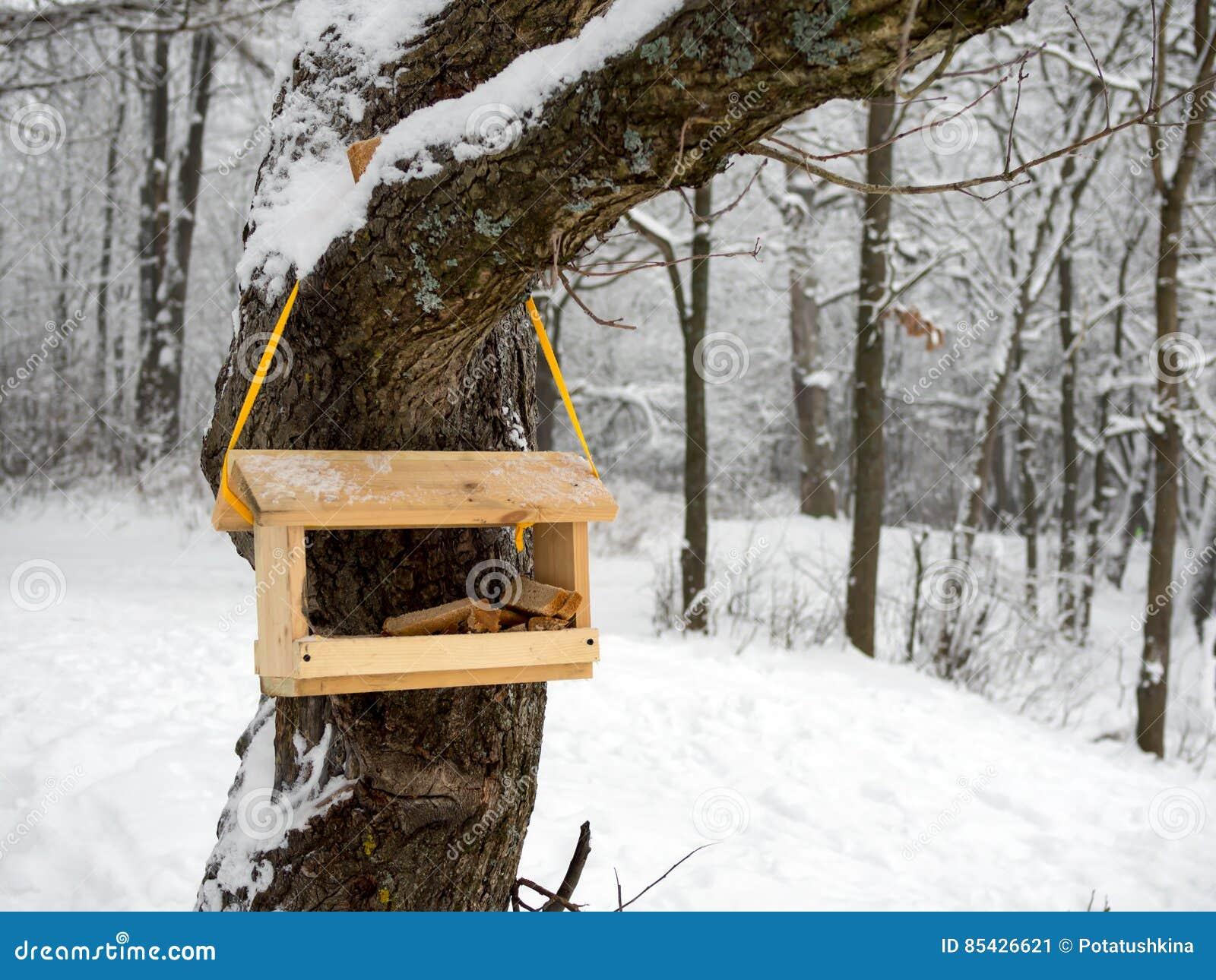 Tom fågelförlagematare i en kall vinterskog