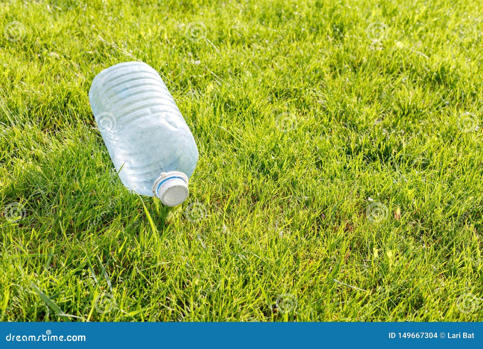 Tom plast- flaska p? en gr?n gr?smatta Begrepp: milj?belastning