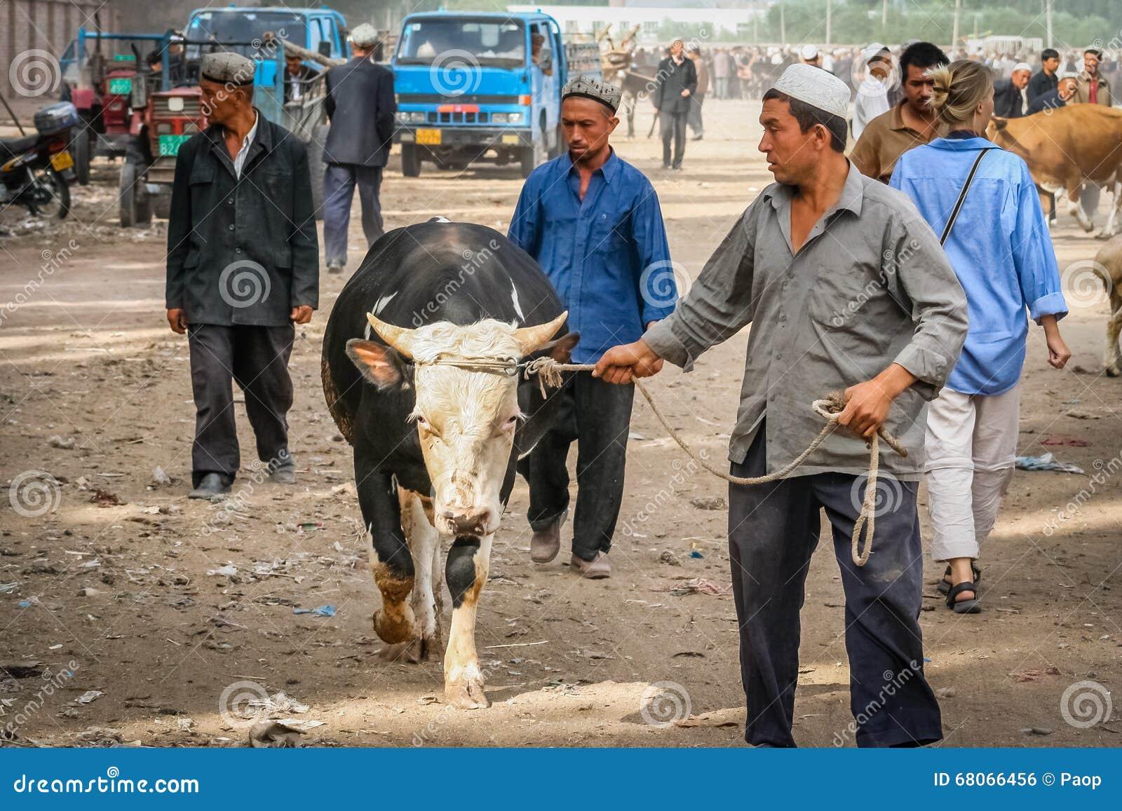 Tomando o touro para a venda