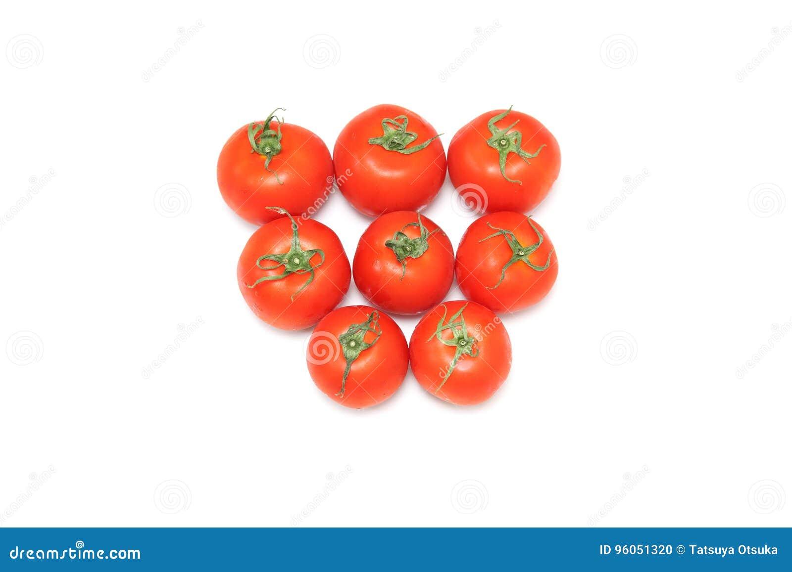 Tomate à un arrière-plan blanc