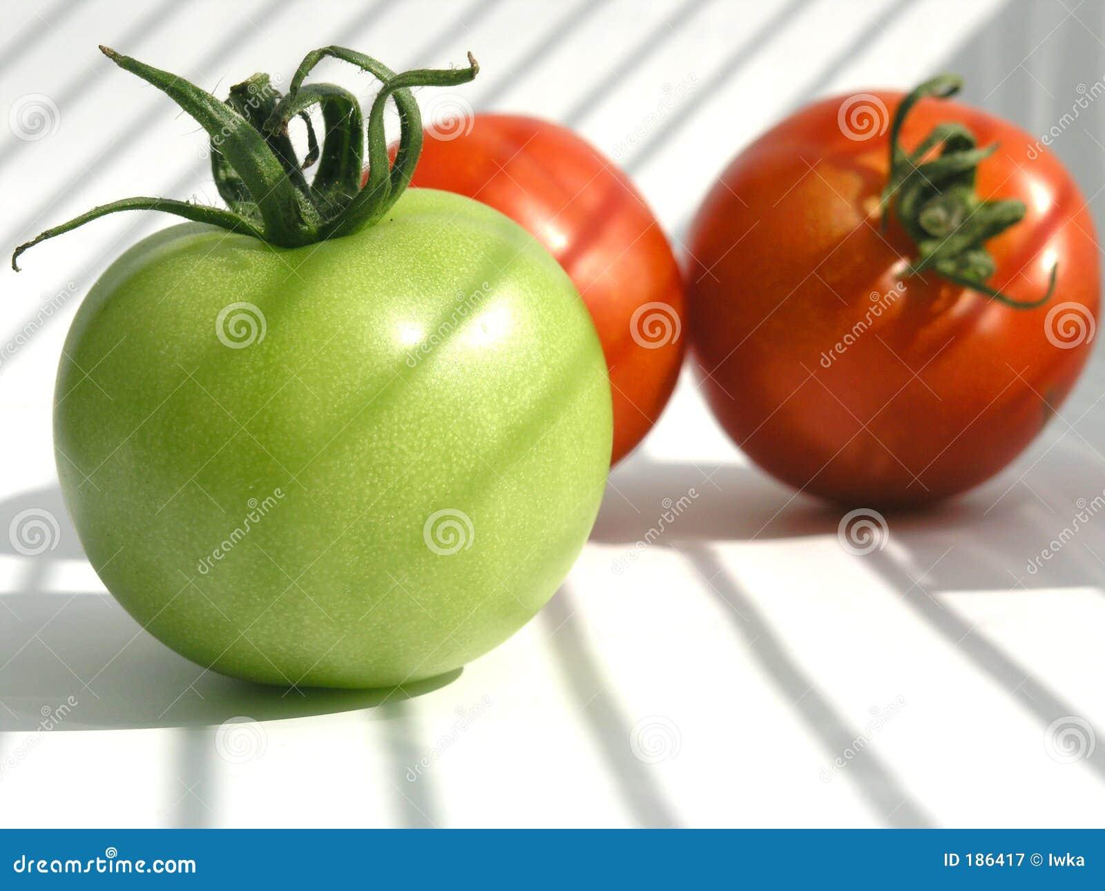 tomate stockbild bild von nahrung tomaten frucht. Black Bedroom Furniture Sets. Home Design Ideas
