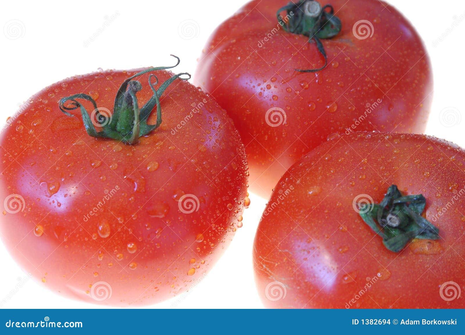 Tomate #5