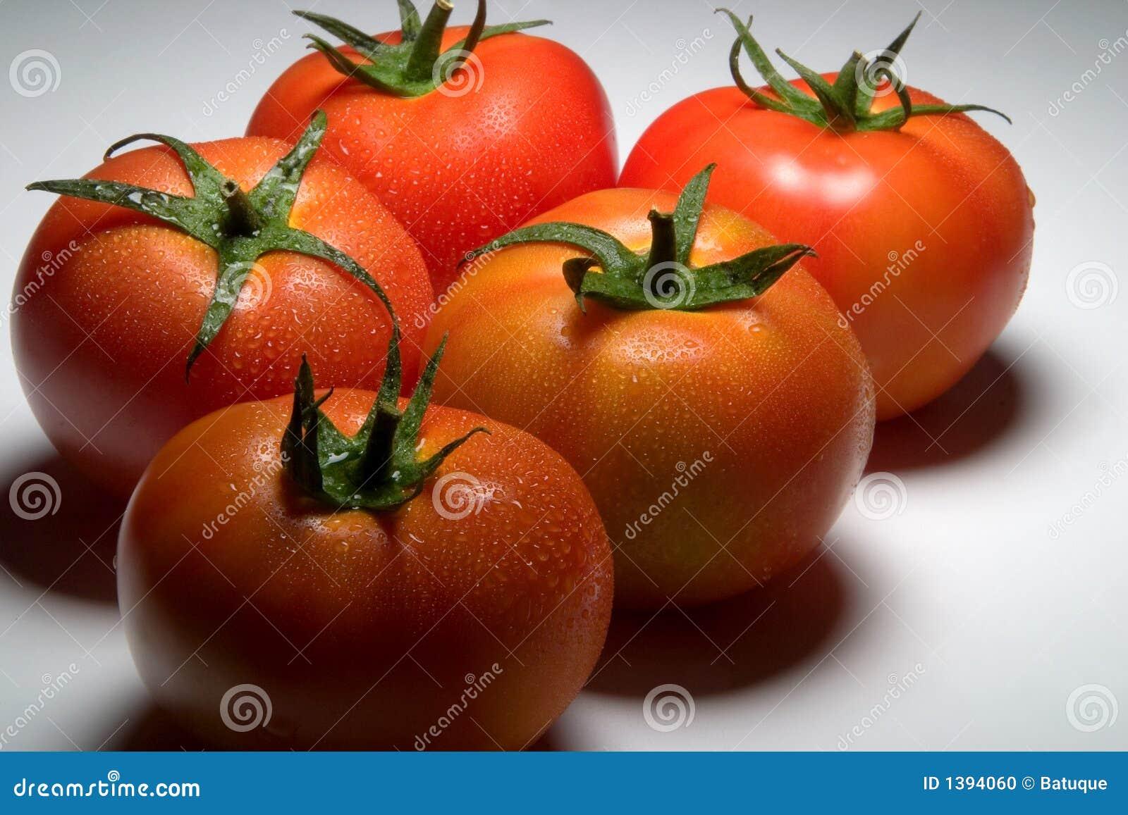 Tomate 9735 Stock Photo Image 1394060